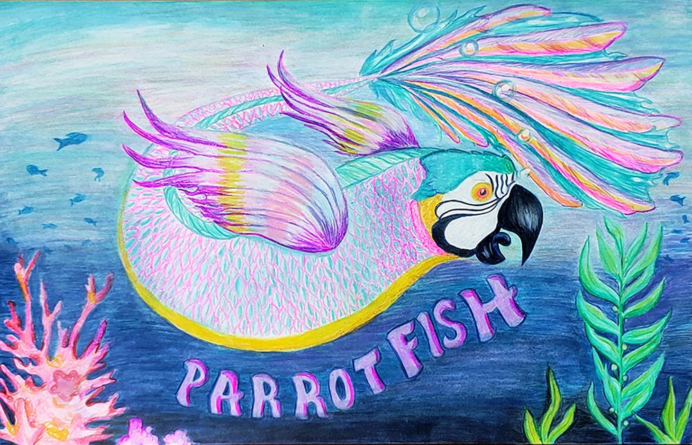 Parrot Fish, Genetic Mutation